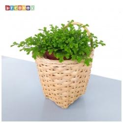 DecoBox米白藤編壁掛小花藍-2個(花藍,花盆, 壁掛, 玄關,鑰匙圈收納)