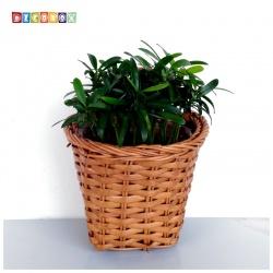DecoBox咖啡藤編壁掛大花藍-2個(花藍,花盆, 壁掛, 玄關,鑰匙圈收納)