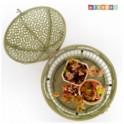 DecoBox英倫風圓形銅綠大鳥籠花架(多肉防鳥花架)
