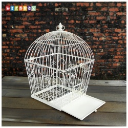 DecoBox藤舞花語刷白鳥籠小花架(多肉防鳥花架)