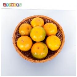 DecoBox 普羅旺斯圓型收納盤(25公分-2個) (雜物籃.神桌拜拜水果盤..麵包盤.肉粽籃)